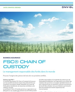 Flyer FSC CoC - Supply chain