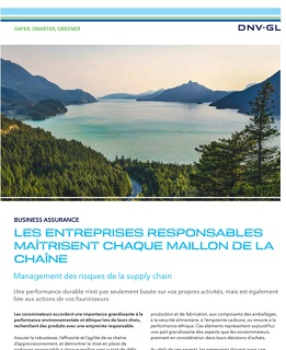 Flyer DNV GL Management des risques de la supply chain